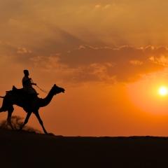 Riding along Thar Desert dunes. India. 2014.