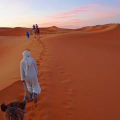 Sahara sunrise. Erg Chebbi, Morocco. 2010.