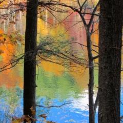 Walden Pond autumn reflection. Concord, Massachusetts. 2012.